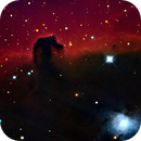 Horsehead Nebula, IC 434 and NGC 2023,                                stevebryson