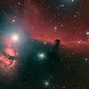 The Horsehead Nebula, HaLRGB,                                riot1013