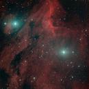 IC 5070 Pelican Nebula,                                Herwig Peresson