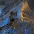 IC 5070  The Pelican,                                Gary Opitz