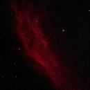 NGC 1499 -  Cali Nebula,                                Michael
