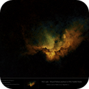 NGC 7380 - Wizard Nebula in SHO (starless) - Hubble Palette,                    Uwe Deutermann