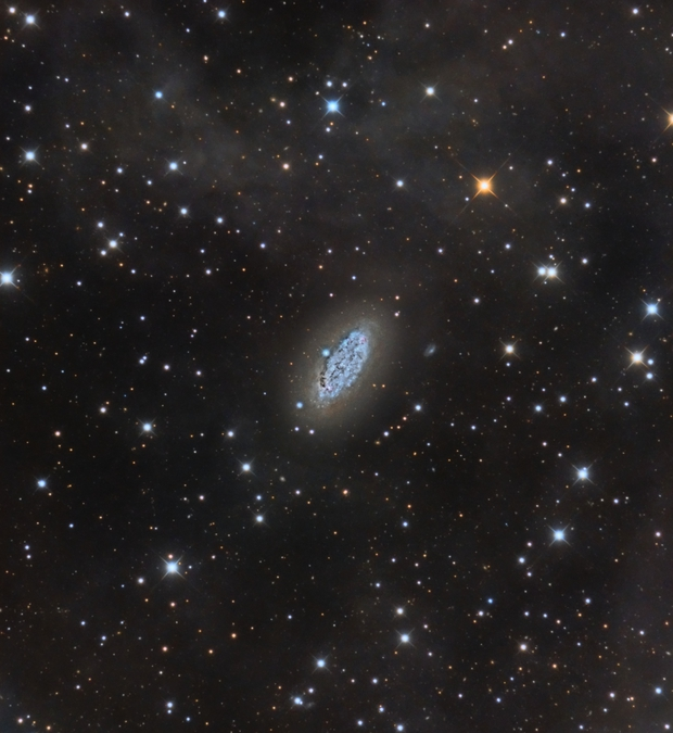 NGC 2976 (Diaz, Alemany, Iovene),                                Salvatore Iovene