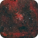 IC 1805,                                Terrance