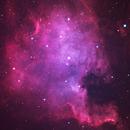 North American nebula,                                Boommutt