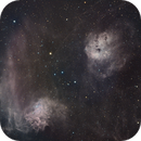 IC405 and IC 410 Flaming Star and Tadpoles,                                ks_observer