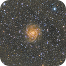 Obscured: IC 342 - The Hidden Galaxy,                                Nico Augustin