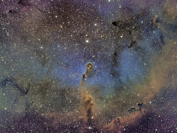 IC1396 Elephant Trunk Nebula,                                Jeremy Seals