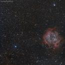 Rosette Nebula - Caldwell 49 - With Canon T2i and 200mm Lens,                                Rodrigo Andolfato