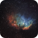 Tulip Nebula,                                  chuckp
