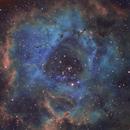Rosette Nebula,                                farrellg