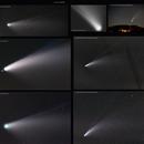 Planche de mes différentes images de la comète Neowise 2020,                                FranckIM06