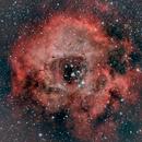 NGC 2237 - Rosetta Nebula (29 Dec 2019),                                Bernhard Suntinger