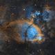 IC1795 - The Fishhead Nebula,                                Emil Andronic