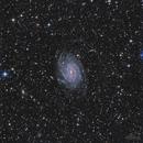 NGC 6744,                                Los_Calvos