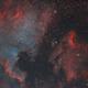 Narrowband real color - NGC7000 and IC5070,                                Arno Rottal