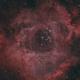 NGC 2239 - Rosette Nebula,                                Samuel Khodari
