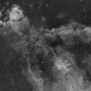 Heart Nebula Ha,                                Clem