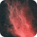 California Nebula NGC1499 (from SE London) HSS,                                Carastro