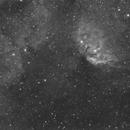 SH2-101 ( Tulip Nebula) and Cygnus X-1,                                John Leader
