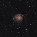 Feuerradgalaxie Messier(M) 101 im Großen Bären (Ursa Major),                                astrobrandy
