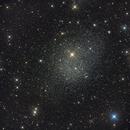 Fornax Dwarf Galaxy,                                Scotty Bishop