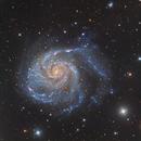 M101 - The Pinwheel Galaxy,                    Paddy Gilliland