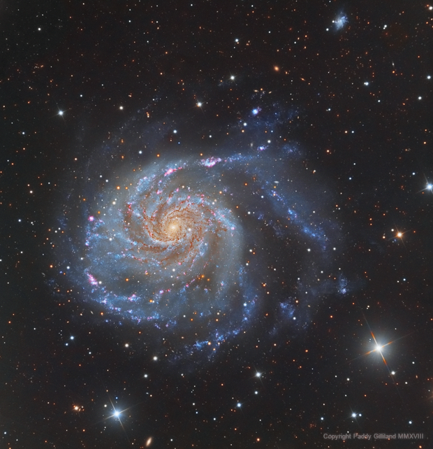 M101 - The Pinwheel Galaxy,                                Paddy Gilliland