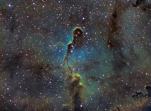 IC 1396 Elephant trunk,                                Justin Daniel
