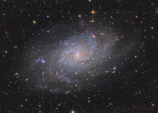 Triangulum Galaxy,                                alexbb