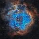 NGC-2237 (Nebulosa Roseta),                                jlarrea