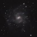 NGC 7424,                                Gary Imm