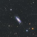 NGC 3198. In the neighbourhood of quasars,                                Simas Šatkauskas