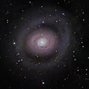 M94,                                Greg Allegretti