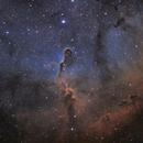 IC1396 - The Elephant Trunk Nebula,                                Callum Wingrove