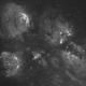 Cat's Paw Nebula,                                Al Alicea