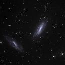 NGC672/IC1727,                                Tom Harrison