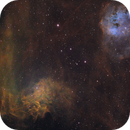Flaming Star + Tadpoles,                                Charles Ward