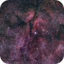 IC 1318 Butterfly Nebula (Sadr region),                                Denis Kan
