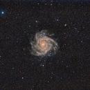 IC 342,                                haxo