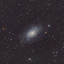 NGC 2403,                                Tim Maciolek