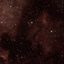 North America Nebula & the Pelican,                                David Moulton