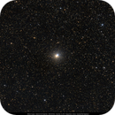 Albireo and Cygnus Area Starfield,                                Michael Feigenbaum