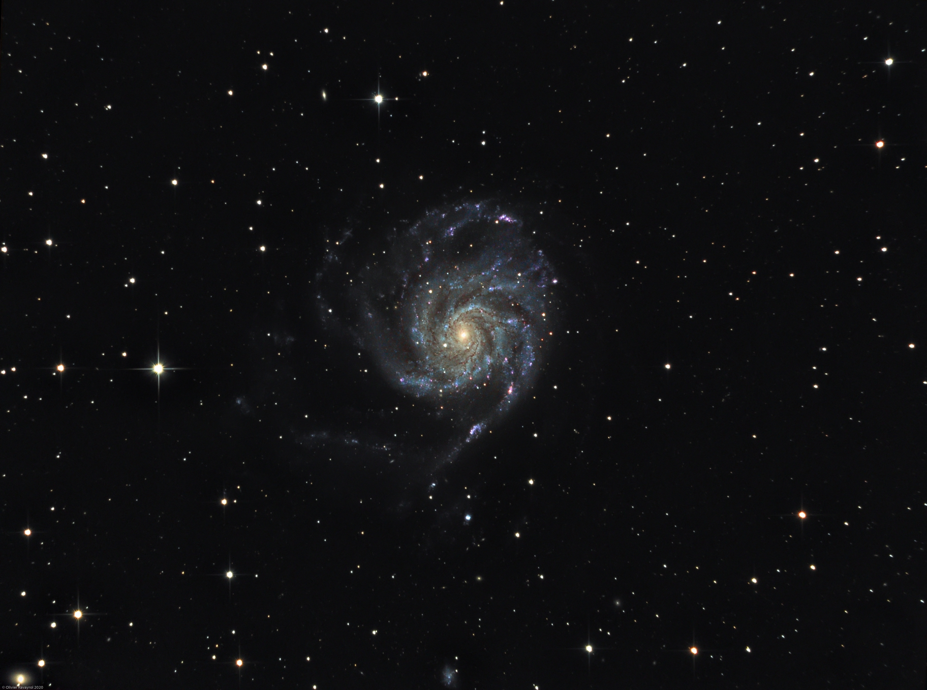 The Pinwheel galaxy (M101),                                Olivier Ravayrol