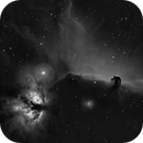 Horsehead and Flame Nebule,                                equinoxx