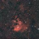 NGC7822,                                Michael Völker