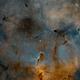 Trunk Nebula Bicolor - 2 panels mosaic,                                Alessio Pariani
