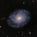 NGC 3486,                                Frank Colosimo
