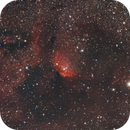 Sh2-101 Tulip Nebula,                                Craig Kensler