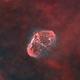 Crescent Nebula - starless version,                                Maurizio Berti
